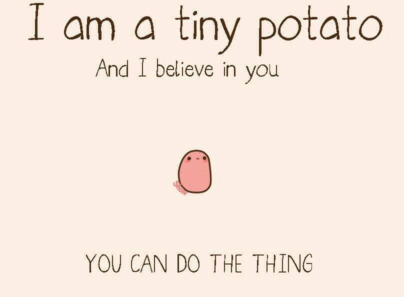 I'm a tiny potato and I believe in you.