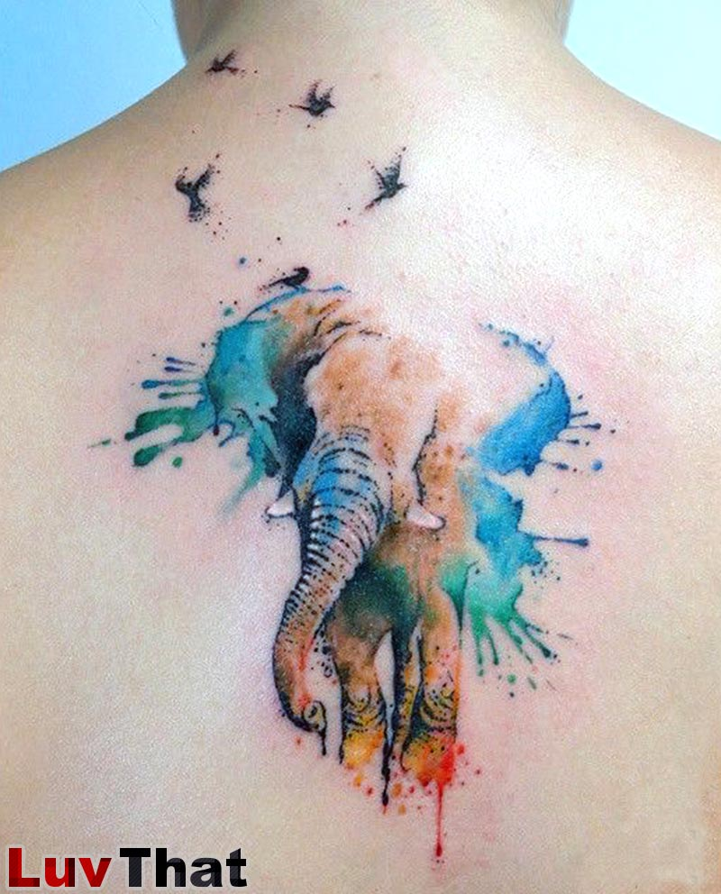 amazing watercolor elephant and birds tattoo