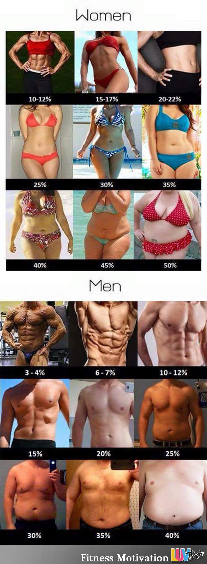 body fat percentage chart with pictures