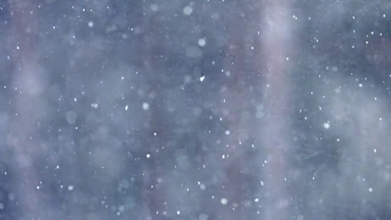 the natural beauty of snowflakes � luvthat